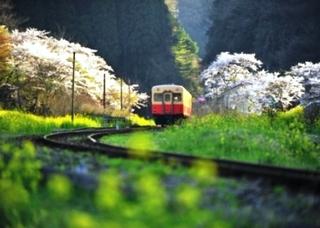 小湊鉄道.JPG